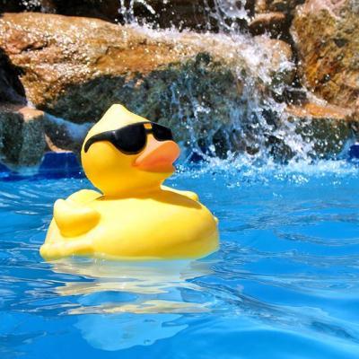 59894b9cf0c1095f706288ddceeb9f61 rubber duck pool parties 1